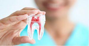 دندان پزشکی اقساطی در کرج